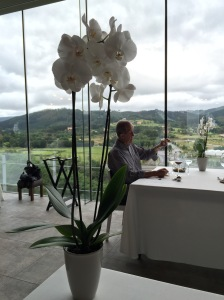 table flower and the view