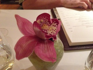 table orchid