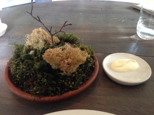 Moss and cep