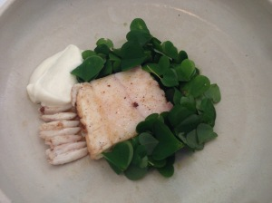 Turbot and nasturtium with cream and wood sorrel