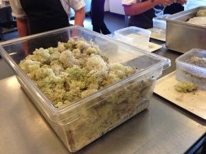 moss supplies