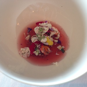 Rhubarb, spring flowers and rose hip th´e
