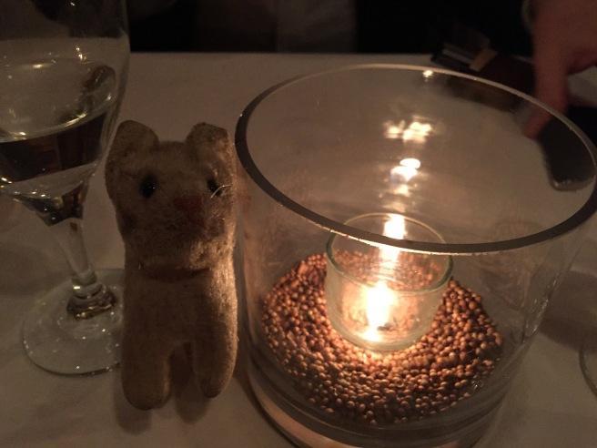 Frankie enjoying the candle light