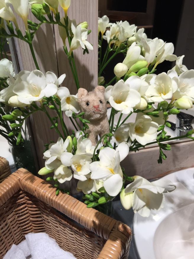 Frankie found the flowers in the bathroom