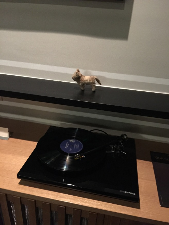 Frankie danced to their LP's playing