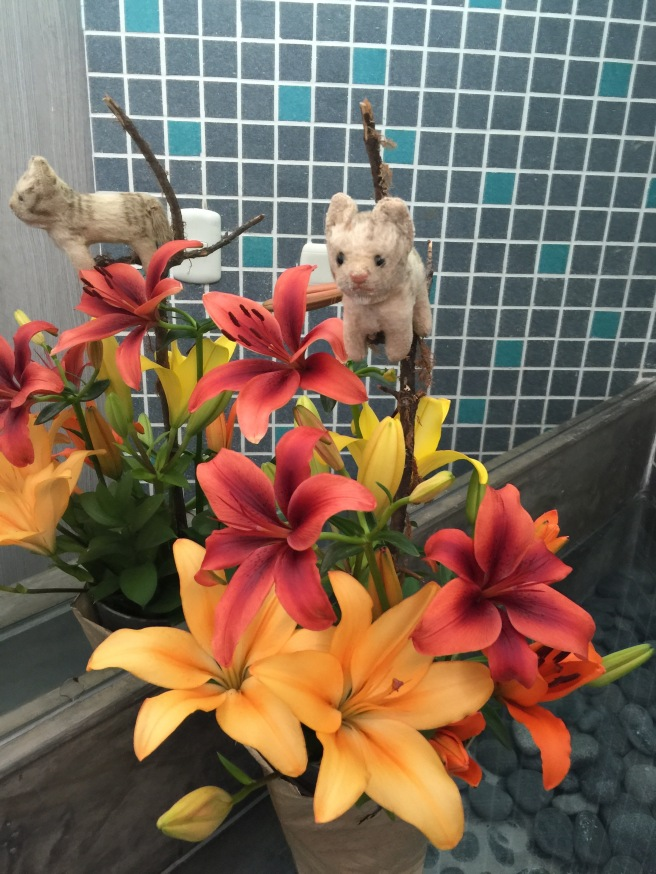 Frankie enjoyed the bathroom flowers