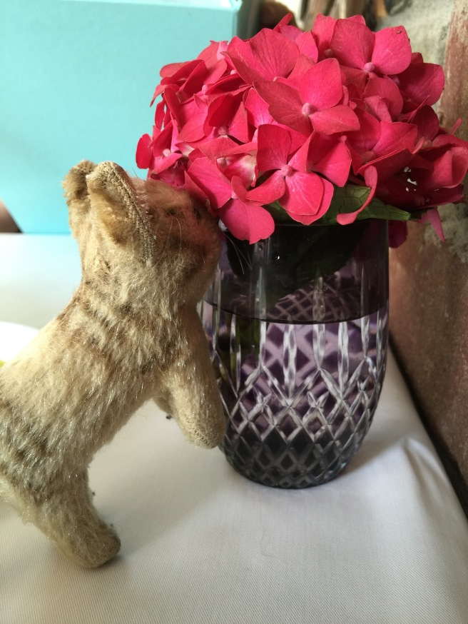 Frankie admired the color of the table flowers