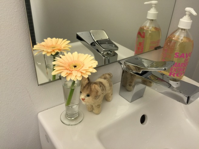 Frankie found a flower in the bathroom