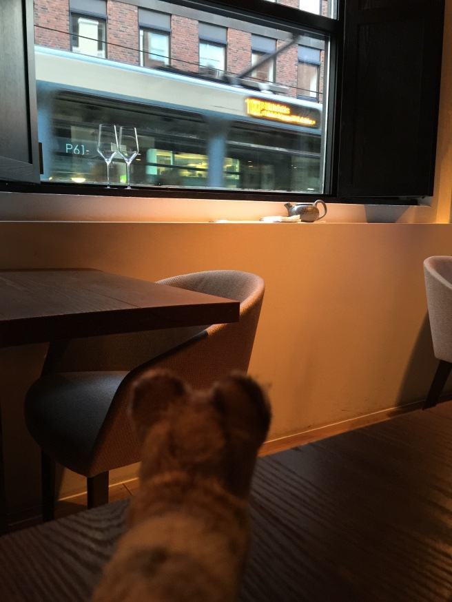 Frankie liked watching the trams go by