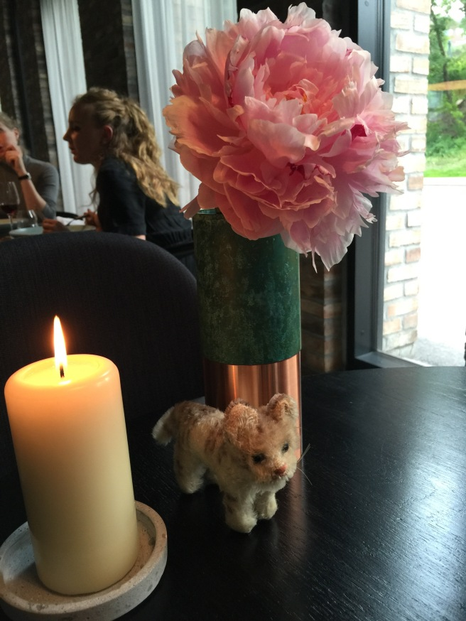 Frankie checks out the table flower