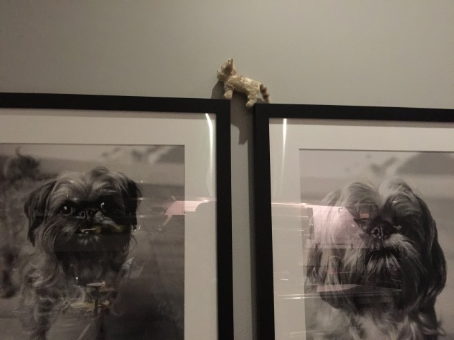 Frankie posed with the pictures of Orsa and Winston