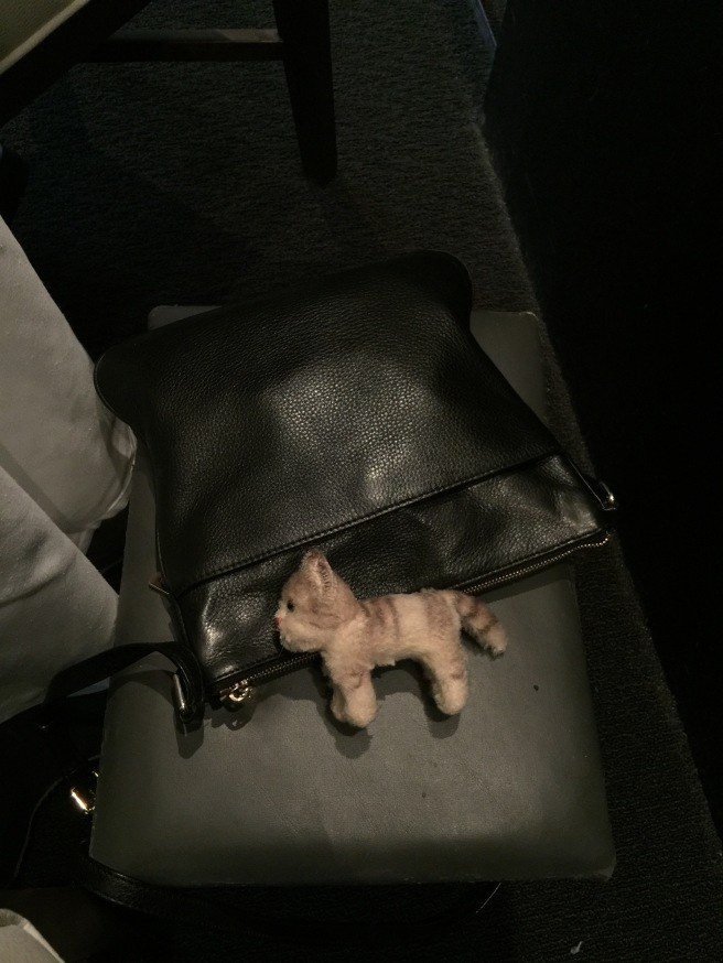 Frankie took a nap on the purse stool