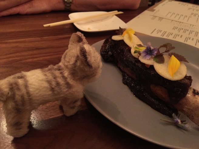 Frankie checks out the rib