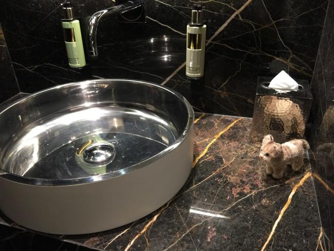 Frankie liked the bathroom sink