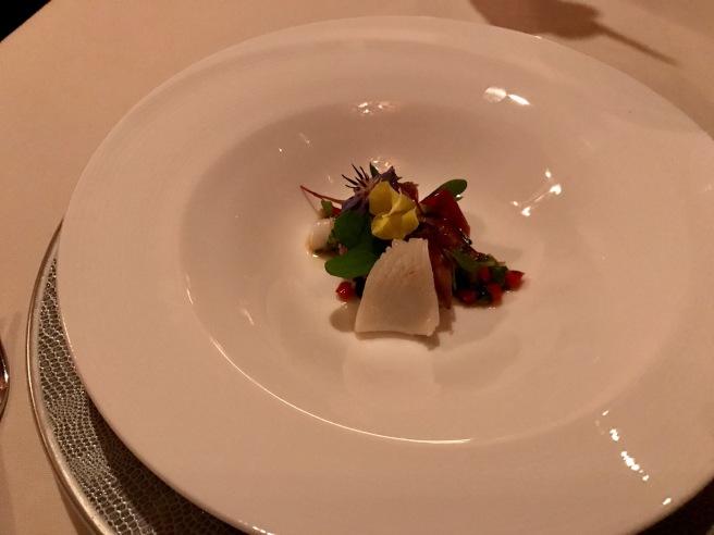 'Sumiika' & 'Hotaruika' Cuttlefish