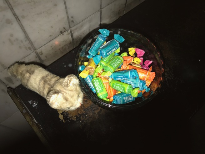 Frankie found a bowl of candy chews