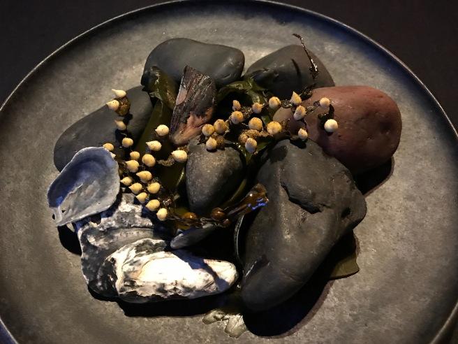 Bladderwrack: Blue mussel