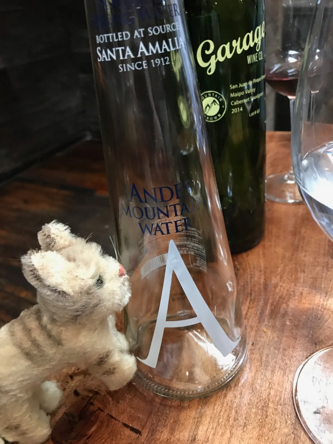 Frankie inspected the Andes Mountain water