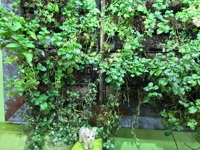 Frankie checked out the green wall decoration