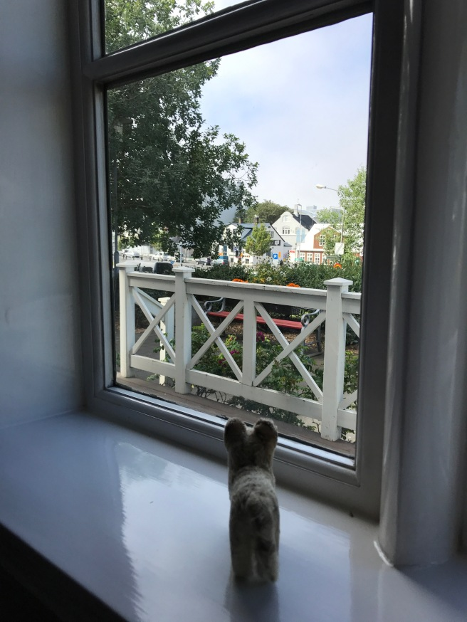 Frankie checked out the view from another window