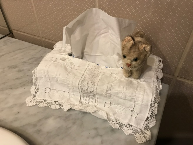 Frankie admired the tissue box cover
