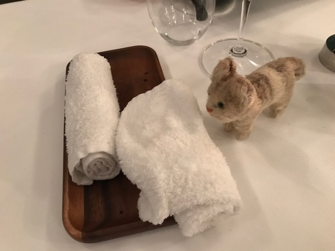 Frankie liked being able to wash her paws before dinner