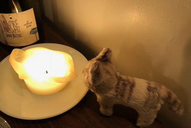 Frankie stared into the flame
