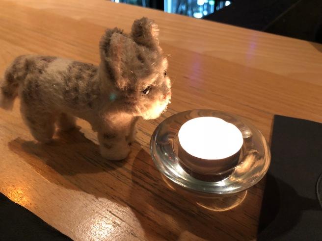 Frankie enjoyed the candlelight
