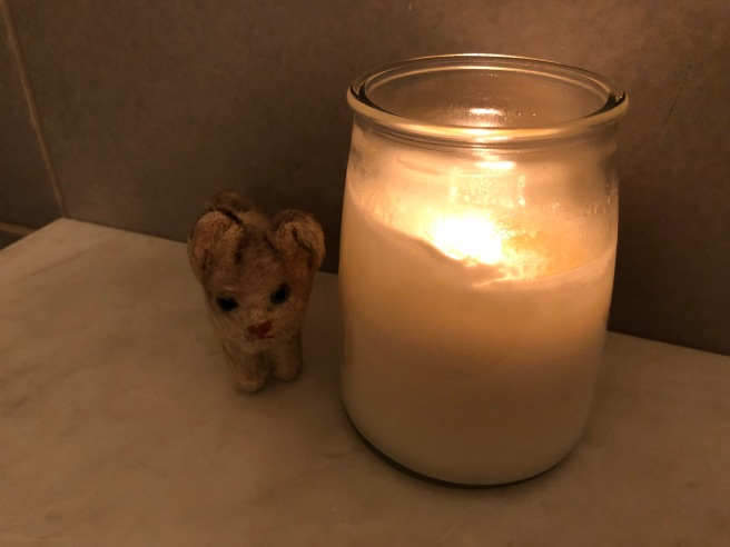 Frankie enjoys a candle