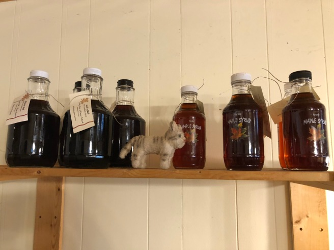 Frankie found some maple syrup for sale