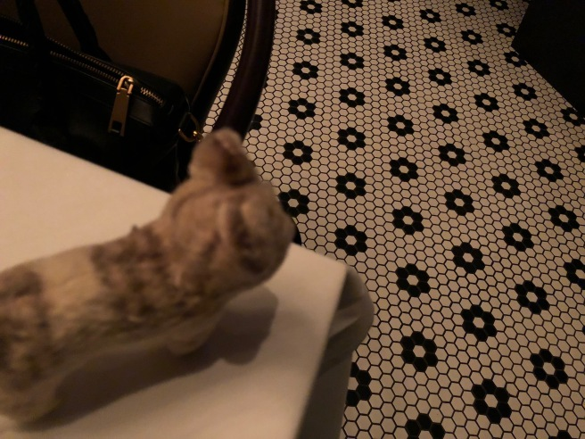 Frankie admired the floor tile