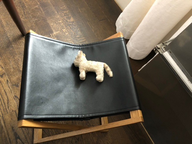 Frankie nappped on the purse stool