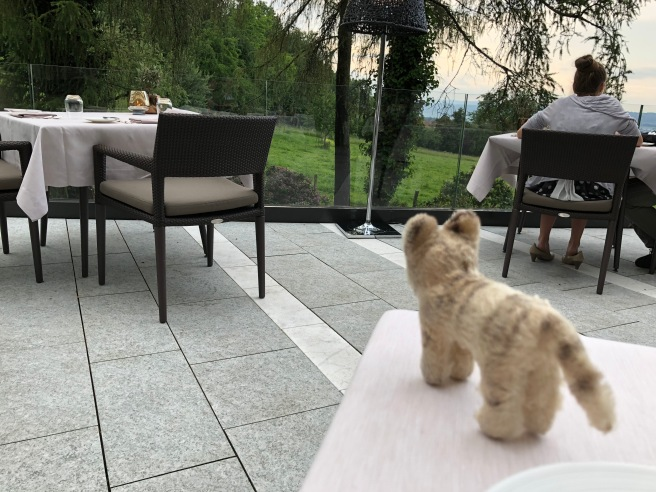 Frankie enjoyed the view
