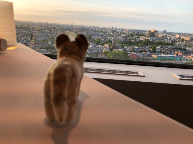 Frankie checked out the view