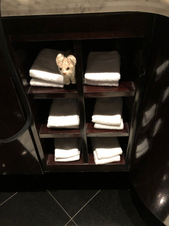 Frankie played in the towel squares