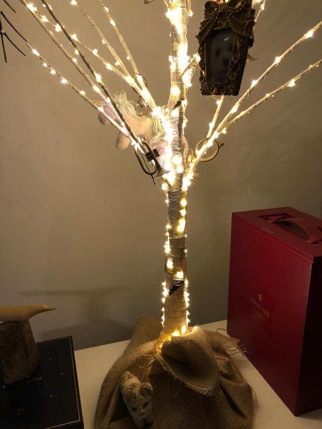 Frankie studied the light