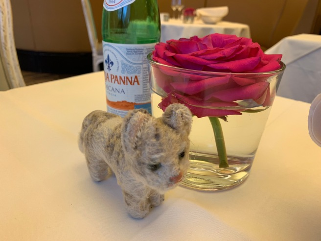 Frankie and the table flower