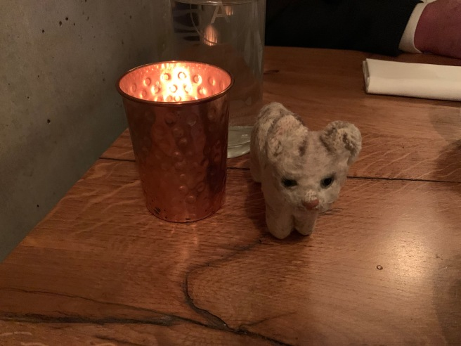 Frankie warmed by the candle