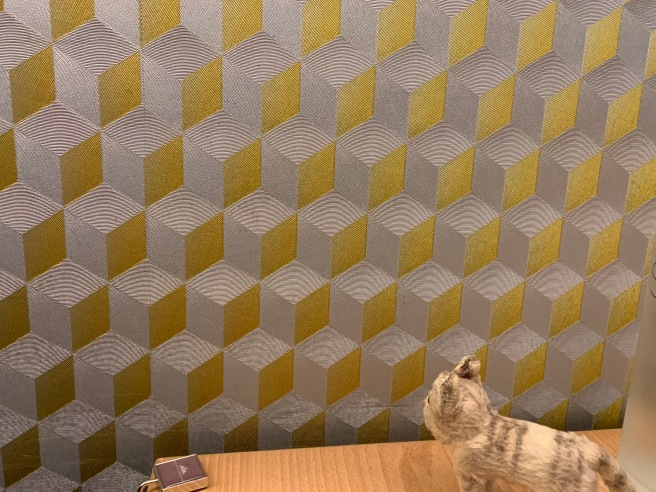 Frankie was mezmorized with the wall paper