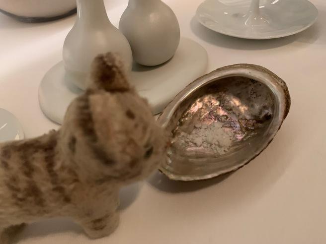 Frankie found salt in a shell